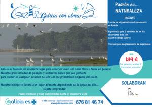 birding-galicia