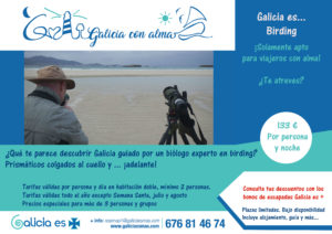 escapada-birding-galicia